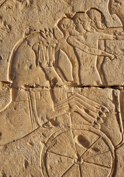 [EGYPT 29995] 'Battle of Kadesh at Abydos.'  The exterior of the northern wall of the Ramses II Temple at Abydos is decorated with scenes from the Battle of Kadesh. Ramses II fought this battle in the 5th year of his reign against the Hittite army near the Syrian town of Kadesh on the Orontes River. The battle is generally dated to 1274 BC. Here we are looking at a chariot in the enemy army, manned by three soldiers. The two horses of another chariot are cutting across the scene.  The…