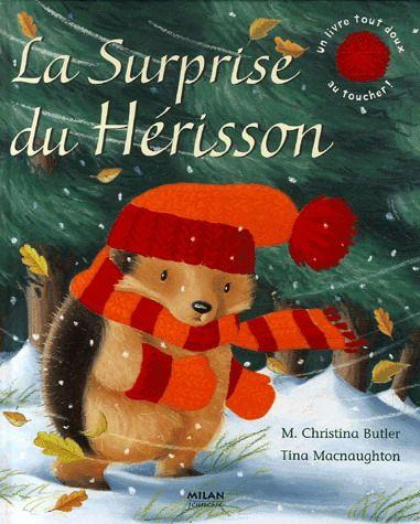 Une terrible tempête a emporté la maison de Petit Hérisson.Il part vite se mettre à l'abri chez son ami Théo le Blaireau et rencontre en chemin d'autres animaux qui tremblent de froid. Comment va-t-il les aider, lui qui n'a même plus de maison ?