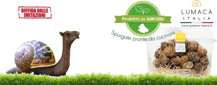 Torniamo a mangiare consapevolmente. www.lumaca-italia.it