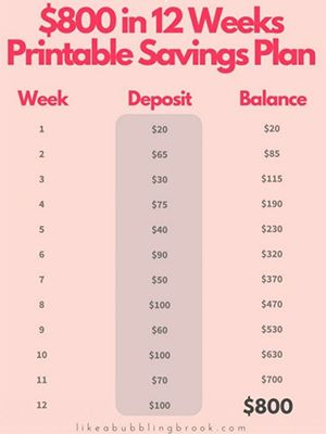 Not to sound too much like your parents, but saving money is actually really important. I know that as soon as your get your allowance or paycheck, you're immediately tempted to spend it on something frivolous, whether it's a new lipstick from Sephora, the book you've been waiting to read, or tickets to see your … Read More