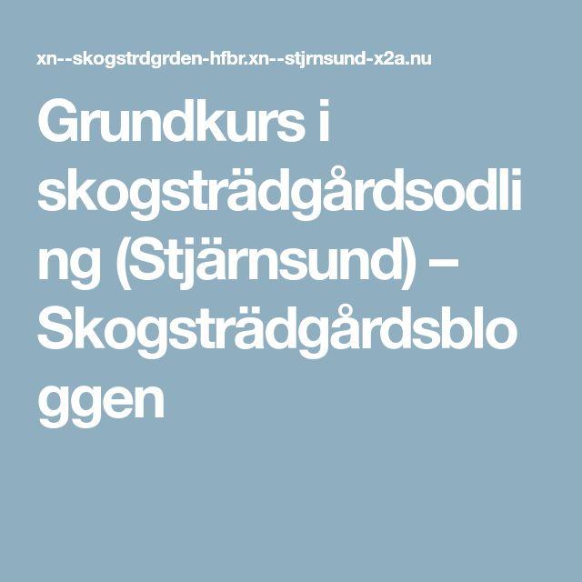 Grundkurs i skogsträdgårdsodling (Stjärnsund) – Skogsträdgårdsbloggen