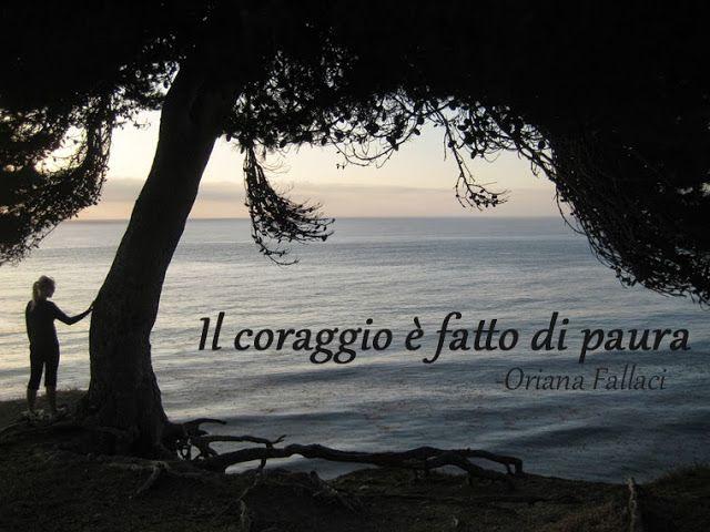 Il coraggio è fatto di paura - citazione da Oriana Fallaci, image of Alex at Palos Verdes by LeAnn for didattichiamo.blogspot