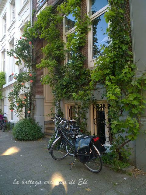 il verde-ad-amsterdam