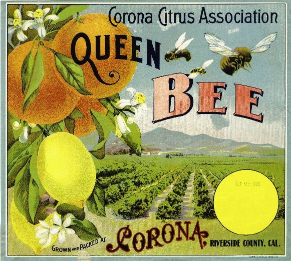 Fruit crate label.