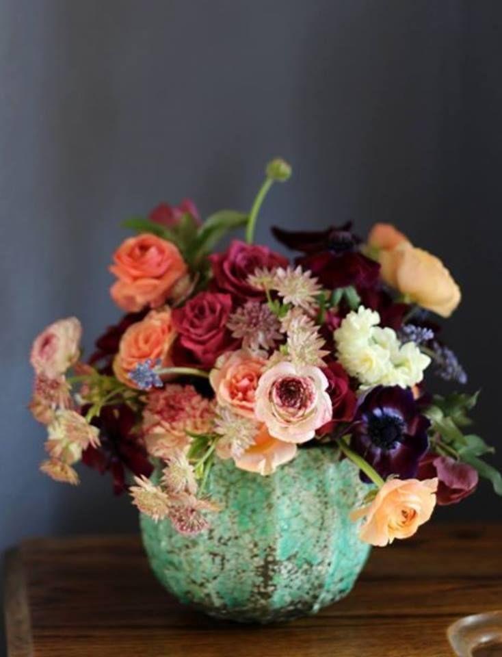 Las 25 mejores ideas sobre luciernagas en el jardin en for Luciernagas en el jardin libro