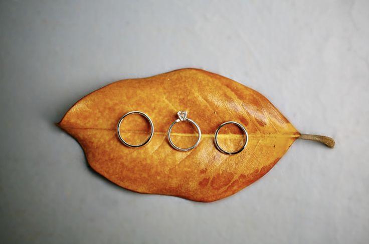 Simple Fall wedding ring shot.
