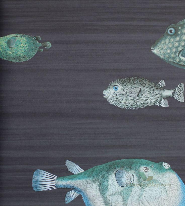 Tapeta Acquario 97/10032 Cole & Son Fornasetti II - Cole & Son Fornasetti II - Sklep internetowy www.tapety-sklep.com