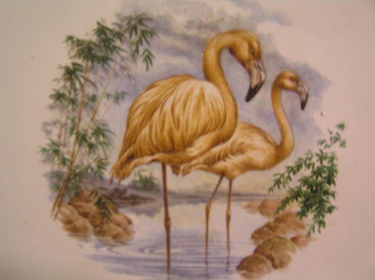 Wenczel 6 x 6 Tile Trivet Backsplash Flamingo Tropical Beach Tile Art  #Wenczel #Flamingo
