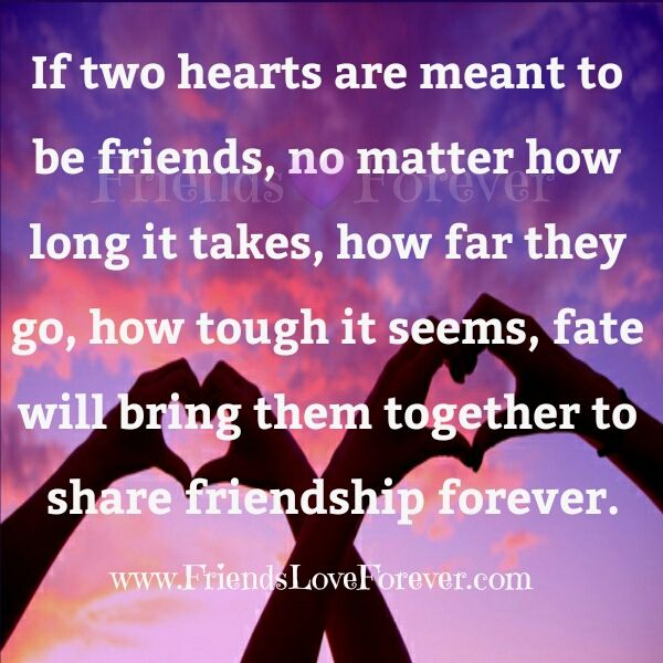 15 best Friendship Quotes ❤ images on Pinterest | Quote ...