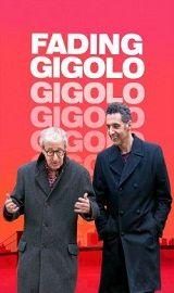 Fading Gigolo 2013 Download Movies http://ift.tt/2wJspmc