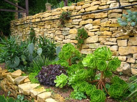 Succulents in a raised, rock wall bed: Rock Wall, Garden Ideas, Front Yard, Stone Walls, Gardens, Mediterranean Garden, Retaining Wall