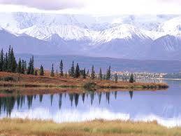 Significado de la palabra tundra, es tierra infertil.