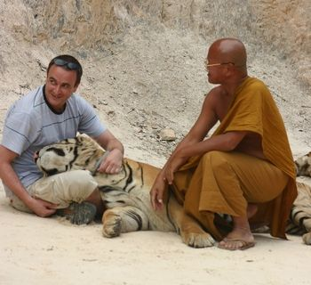 Tiger sanctuary in Thailand, on my list of places to go on backpacking trip through southeast Asia