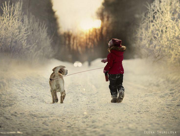 Last winter walk... by Elena Shumilova