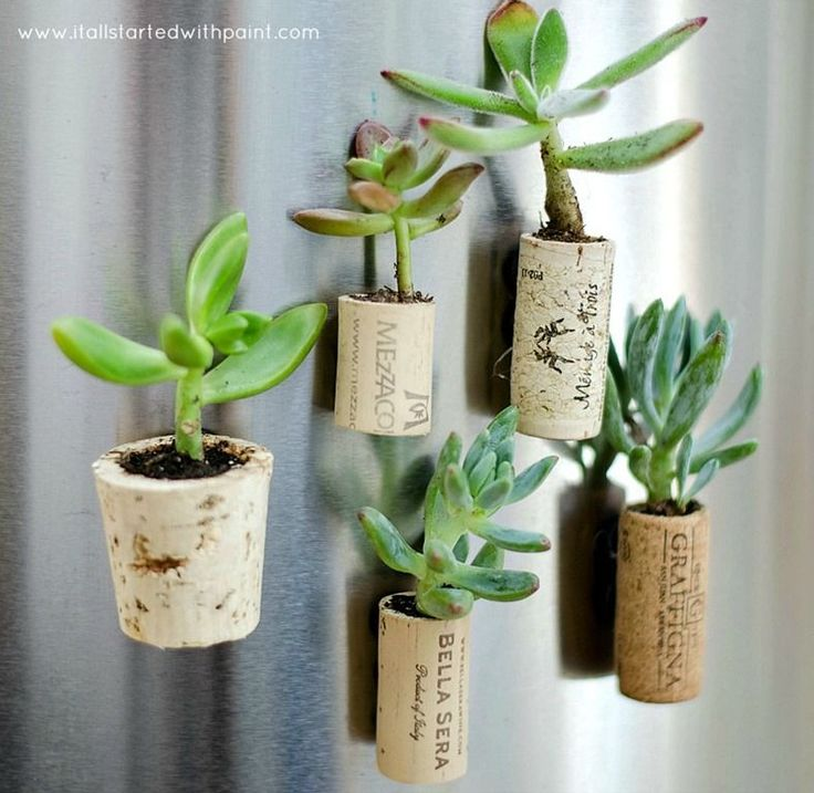 wine-cork-magnet-planters-tutorial-how to