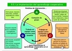 CÓMO APRENDER A COOPERAR PASO A PASO (I) La cohesión grupal