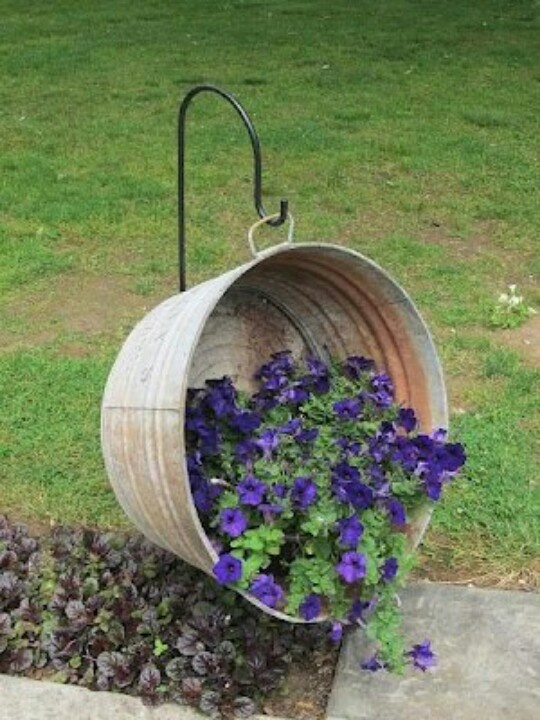 Galvanized bucket flower pot.