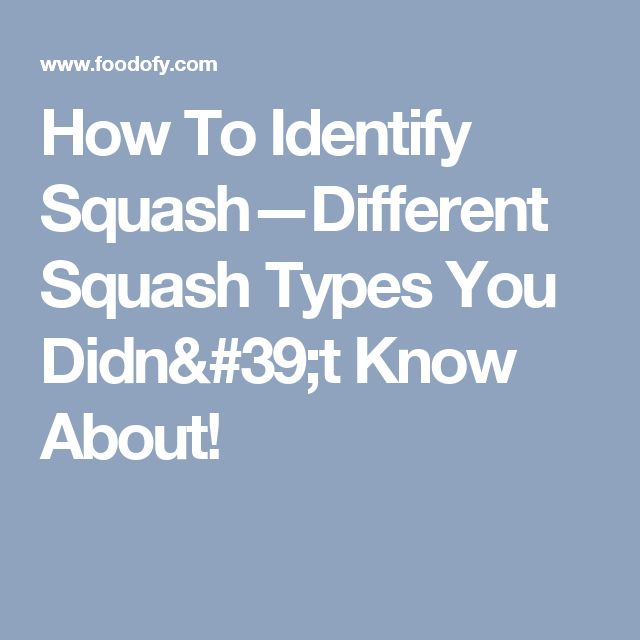How To Identify Squash—Different Squash Types You Didn't Know About!