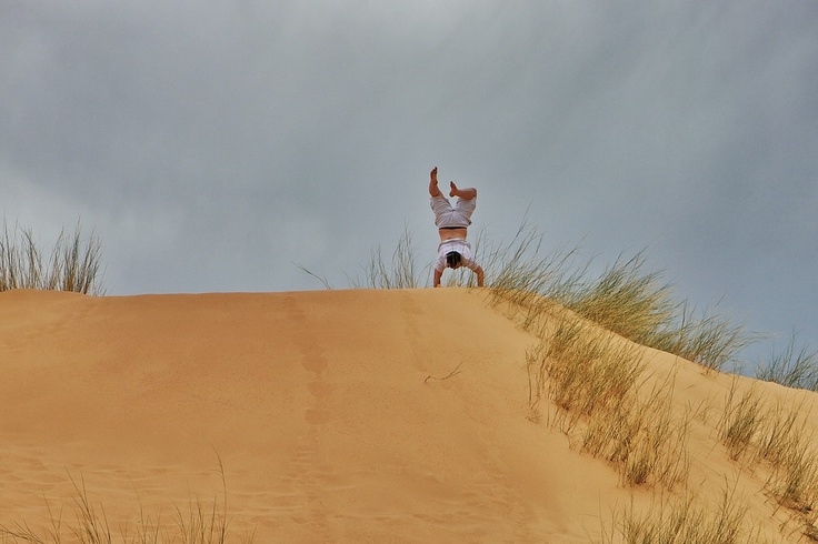 Day 2: Monkeying around on the massive dunes in the Witsand Nature Reserve, Northern Cape.    - Nightjar Travel Blogs