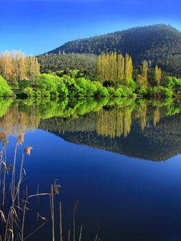 The Derwent Valley, just north of Hobart, is a step back in time to quiet country roads, bucolic scenery and the relics of early settlement.