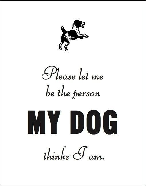 Please Let me be the Person my Dog Thinks I am. by sfgirlbybay