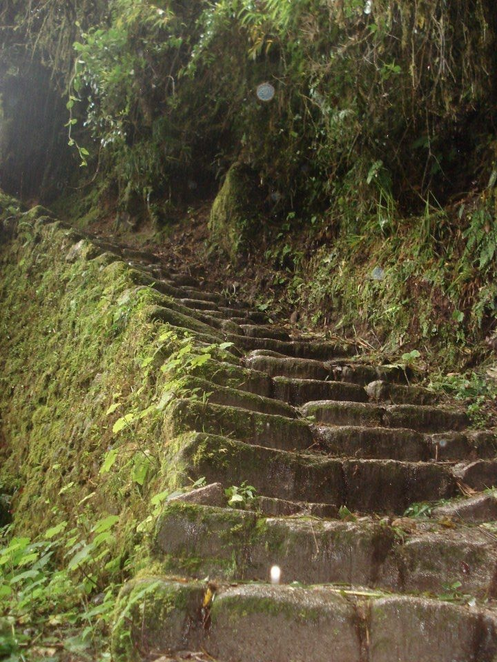 The Inka Trail (Photo by Michael Schmidt)