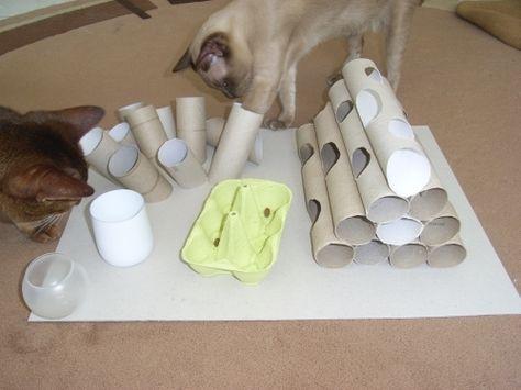 do it yourself katzenfummelbrett selber bauen katzen. Black Bedroom Furniture Sets. Home Design Ideas