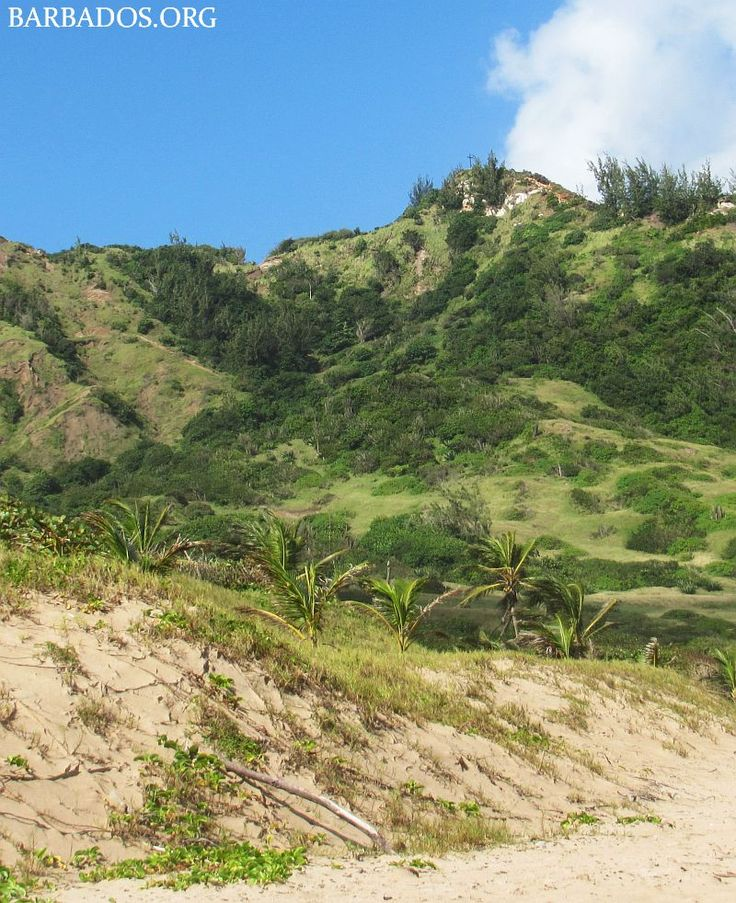 The lush hills overlooking Cattlewash Beach on the east coast of Barbados.