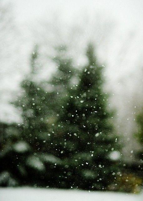 snowy /