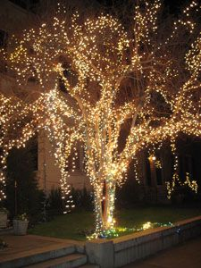 57 best Outdoor String Lights images on Pinterest | Home, Marriage ...