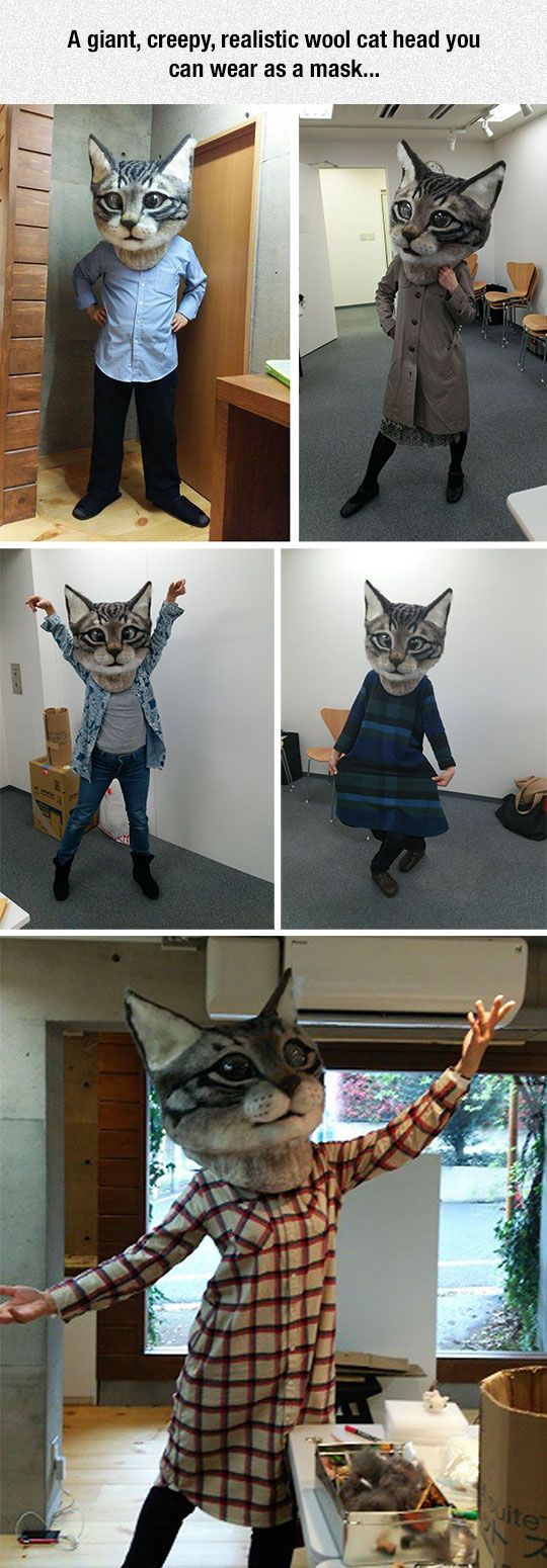 This needs to be the new meme, move out of the way horse mask hello giant terrifying cat mask