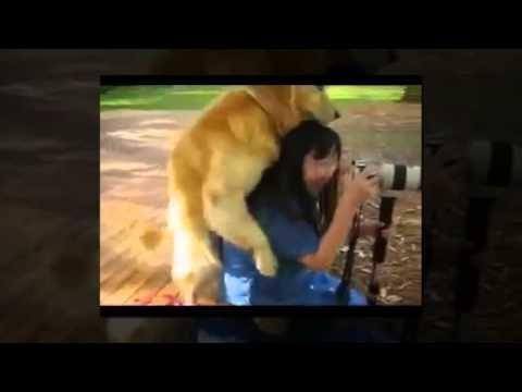 Собака насилует женщину Жесть!