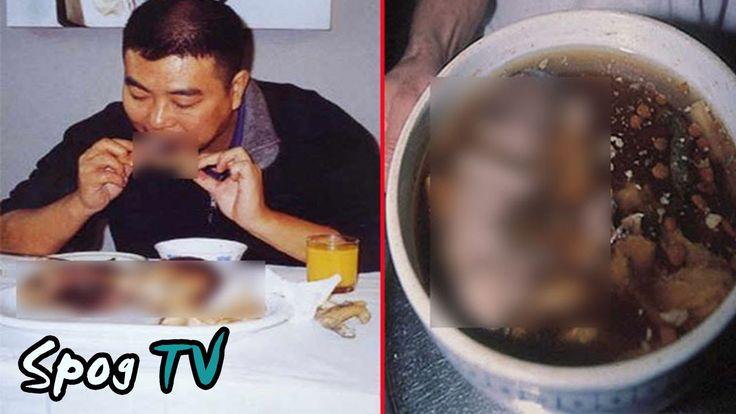 เมนูสยอง ชาวจีน กินเด็กทารก จิตใจทำด้วยอะไร - Spog TV