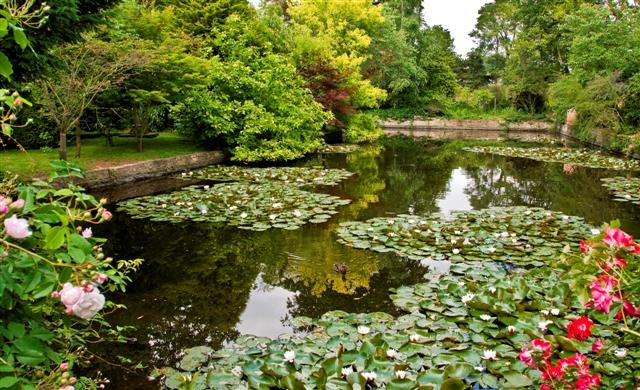 The Horse Pool - Spetchley Park Gardens
