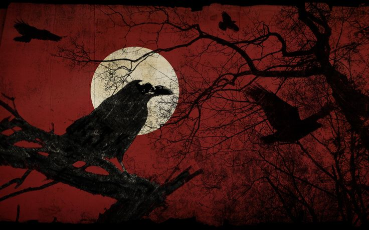 Raven During A Full Moon Red Black Wallpaper Wallpaper