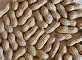 Image Detail for - Nuts About Nuts! « Coborn's Blog