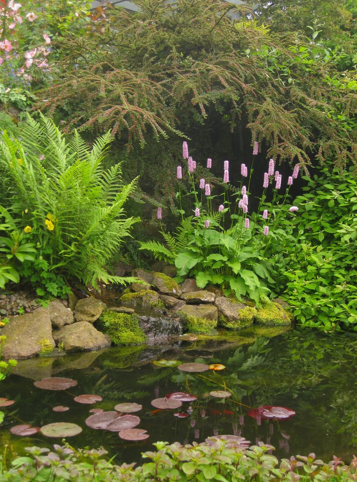 Planting around a pond - pond and planting design by Goose Green design