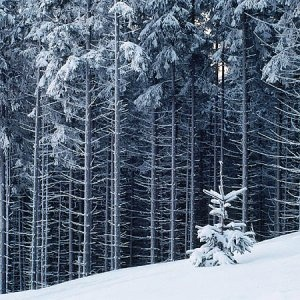 winter in Beskidy Mountains, Poland.