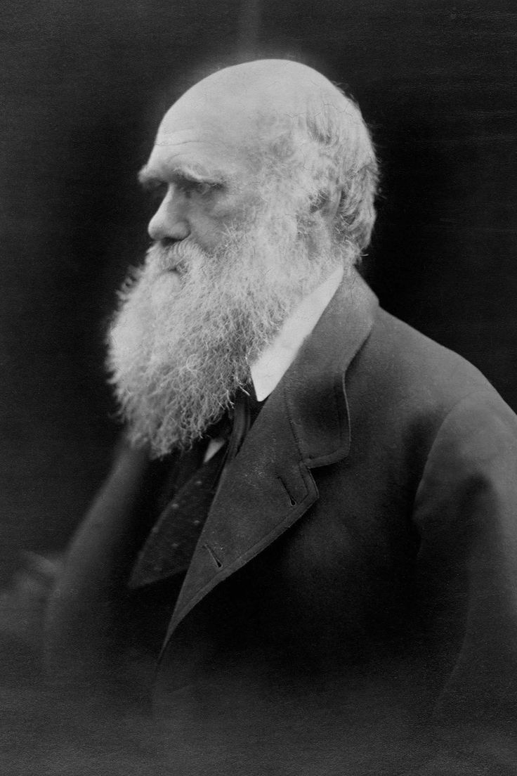 the reception of charles darwin's on This paper explores charles darwin's hypothesis of pangenesis through a popular and professional reception history first published in the variation of animals and plants under domestication (1868).