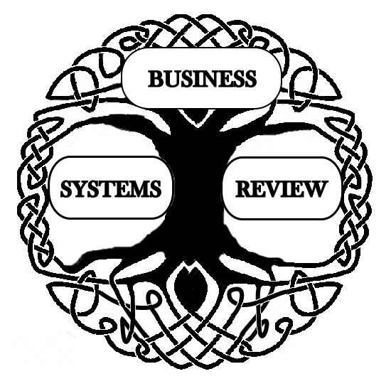 Charles.Francois(2012).Complexity.and.Systemic.Models.Business.Systems.Review.1.1.