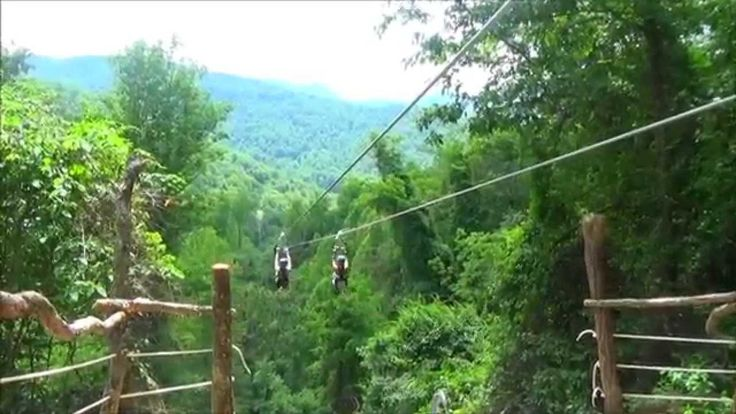 Ride the zip lines at Navitat Canopy Tours, near Asheville in the North Carolina Mountains