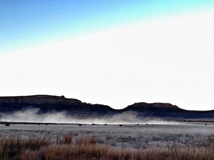 Early morning frost and mist in Harrismith, South Africa