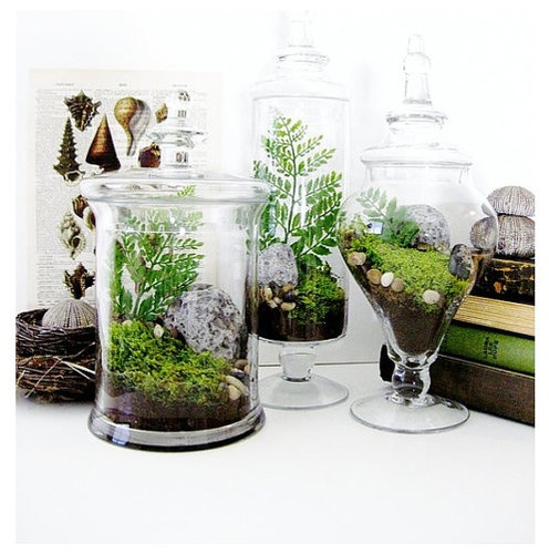 Best 25 Indoor Pots And Planters Ideas On Pinterest To Grow Indoor Garden And Lighting And