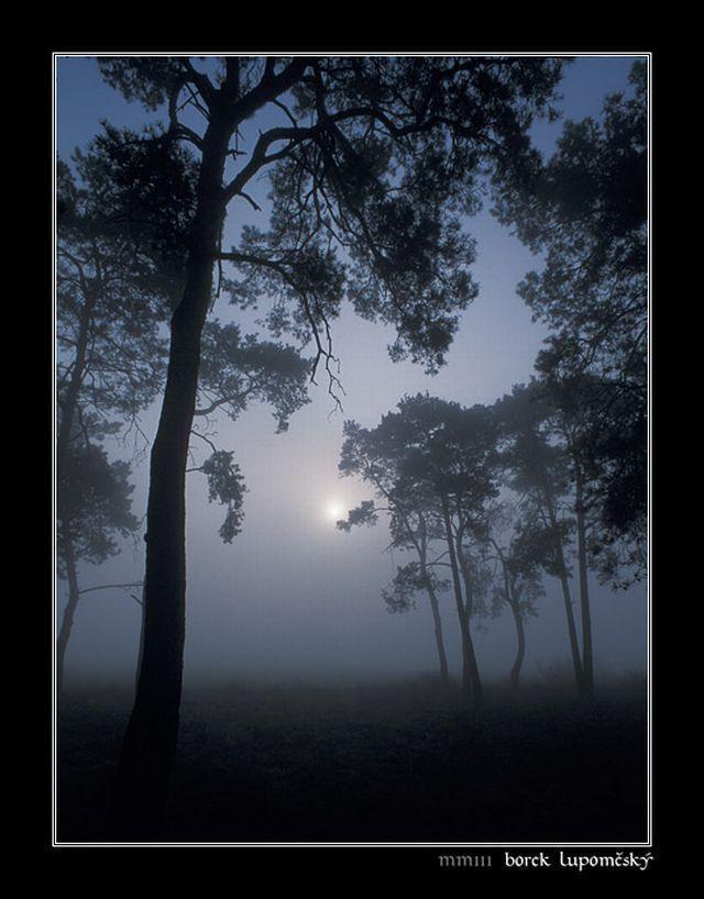 Be jó az éjben bátoran menni,Be jó az éjben egyedül lenni;Bús tavaszi éjjelS borusan járni szerte-széjjel.Ha a Hold szunnyad, szellő se rebben,Virágok nyitnak elfeledetten,Tüzes, tüskés rózsák,Ölelik a Föld takaróját.Elhaló hárfák titkos zenéje(Ez éj a Ielkem…