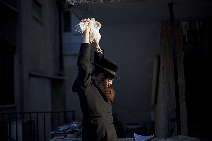 An ultra-Orthodox Jew prepares to slaughter a chicken as part of the Kaparot ritual. Israel.