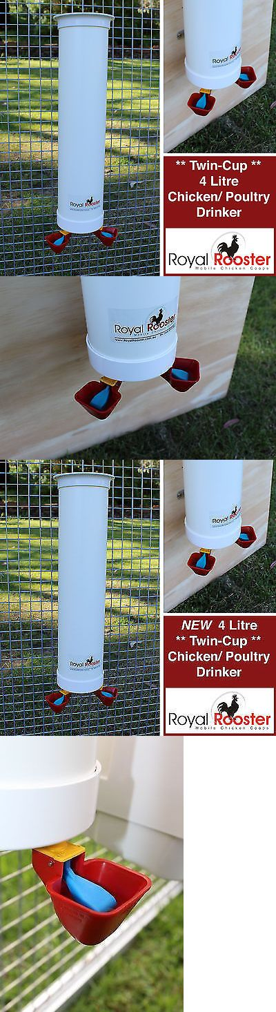Backyard Poultry Supplies 177801: Royal Rooster Chicken / Poultry Coop - Single Waterer / Drinker With Twin Cups BUY IT NOW ONLY: $59.99
