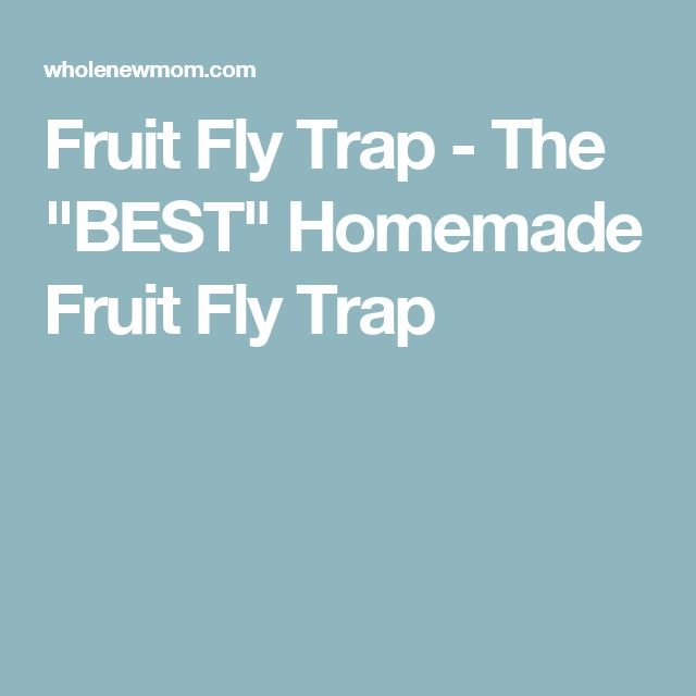 "Fruit Fly Trap - The ""BEST"" Homemade Fruit Fly Trap"