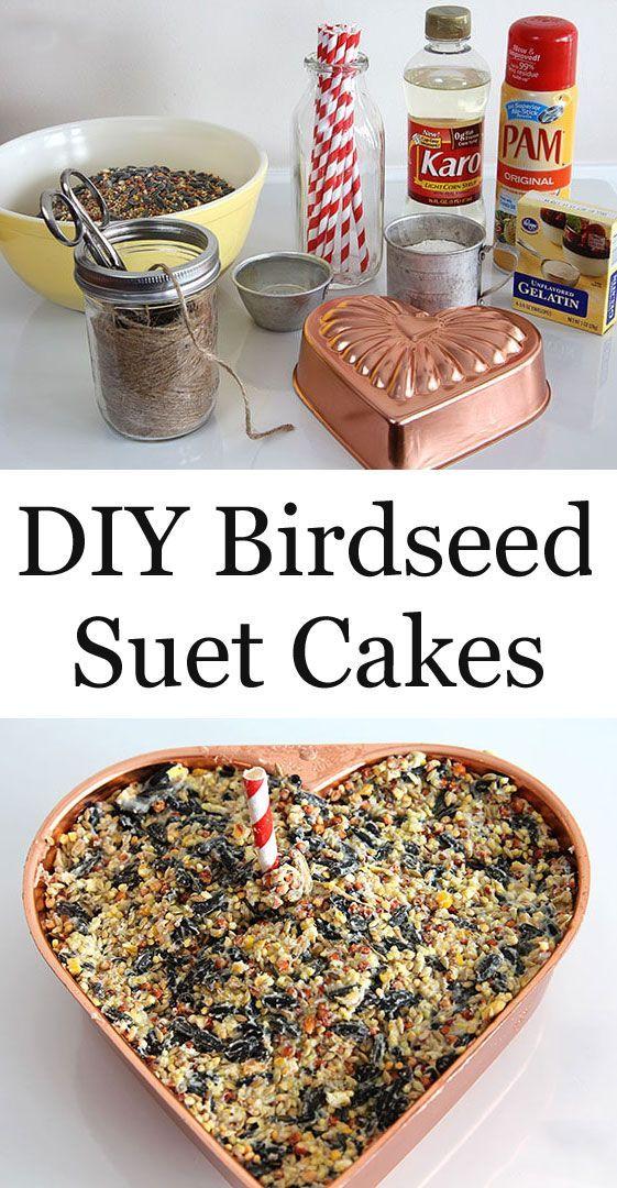DIY Birdseed Suet Cake