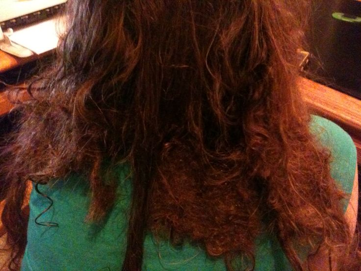 How to untangle matted hair extensions click to see how to how to untangle matted hair extensions click to see how to untangle matted hair extensions stepbystep hair extensions pinterest hair extensions and pmusecretfo Gallery