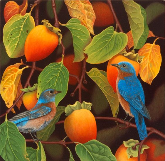 Bluebirds and Persimmons  Andrea Johnson